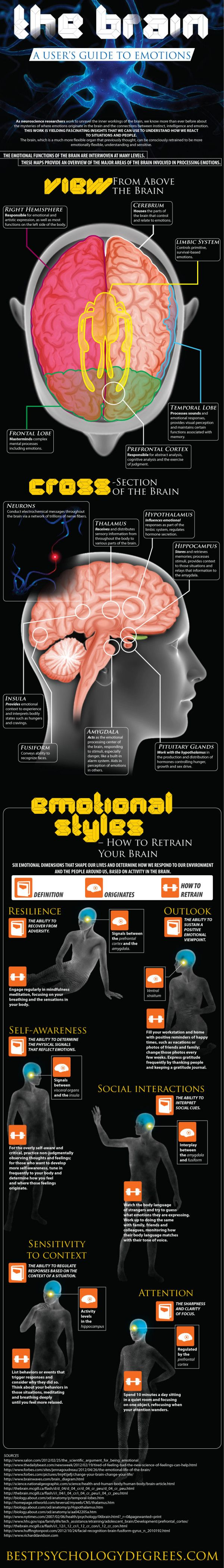 Though culture teaches us that emotions come from the heart, science knows it's just one of the many fascinating functions of the brain and are discovering more and more about this fascinating field every day.  This infographic from BestPsychologyDegrees takes a closer look at the research and what we now know about the brain and emotions.  Via BestPsychologyDegrees.com							    		  							March 8, 2013									1 Reply  								  	    		  		Post navigation
