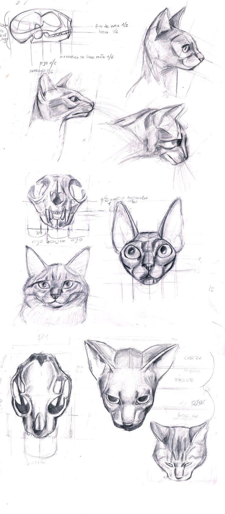 fail cat skeleton doodle - photo #23