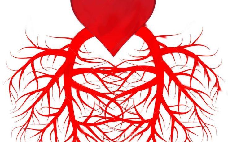 Verhärtete Blutgefässwände sind ein wichtiger Hinweis darauf, dass es nicht so gut um die Herz-Kreislauf-Gesundheit steht. Vitamin-D-Mangel scheint zu dieser Verhärtung der Blutgefässwände eindeutig beizutragen – so Dr. Yanbin Dong,