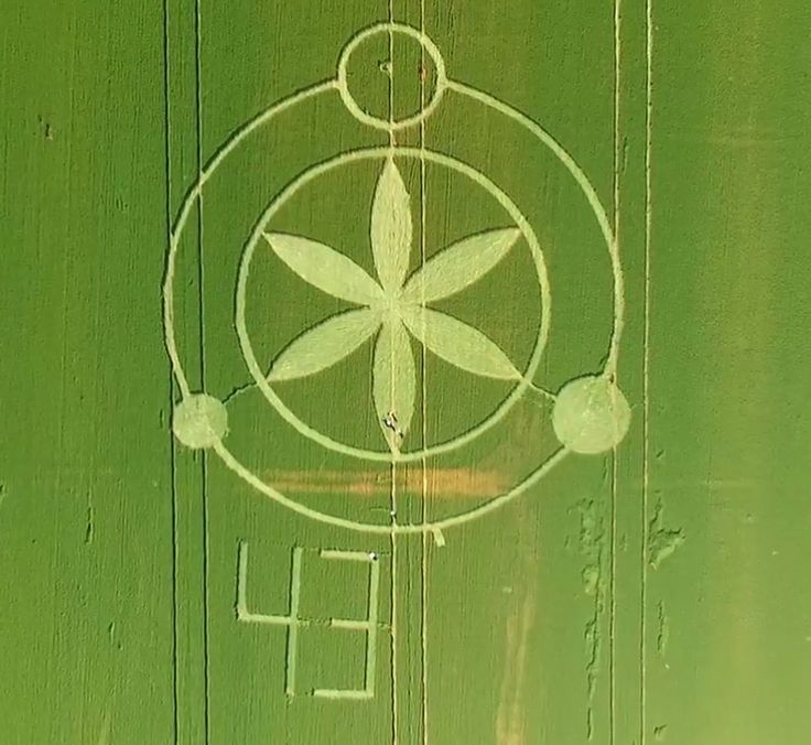 Crop Circle at Prudentópolis, Paraná, Brazil, Reported 27th September 2016