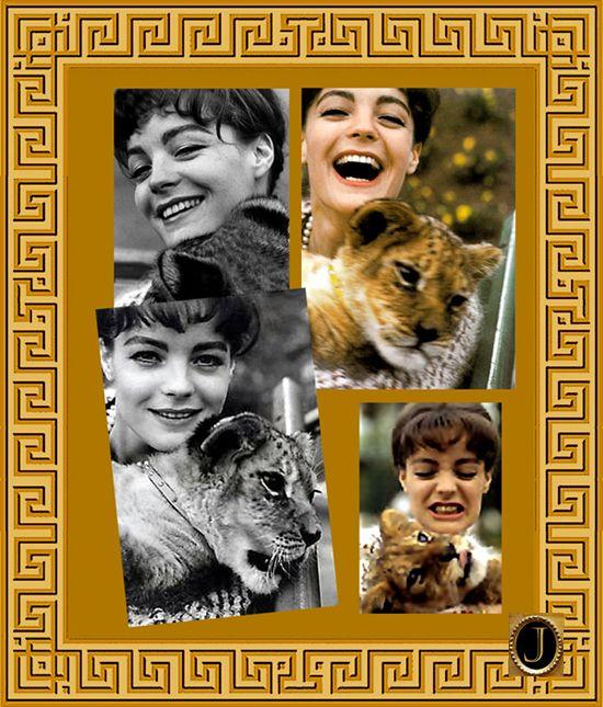 1963 - Zoo in Rom