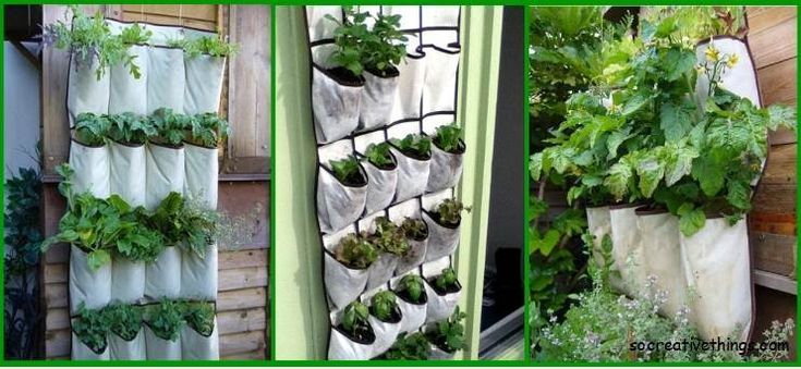 Simple planter ideas for small gardens shoes organizers Simple Planters To DIY Gardens
