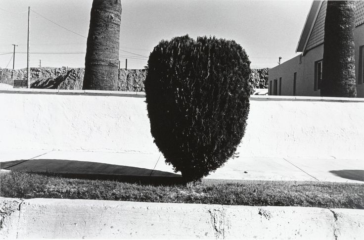 Henry Wessel, Jr., Untitled, Yuma, Arizona. 1968.