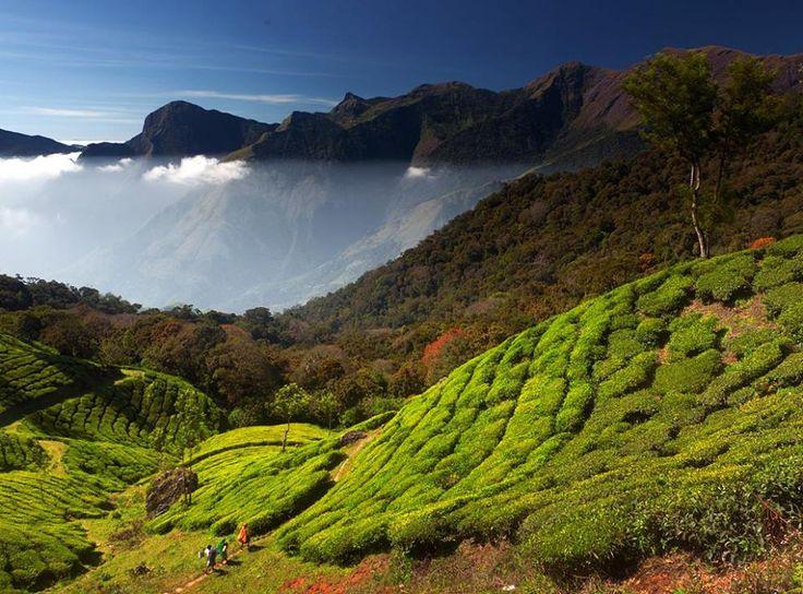 Om Voyage est une agence de Voyage contact pour, séjour inde pas cher , voyage pas cher inde , voyage organisé inde, agence de voyage inde, promotions inde, circuit inde.