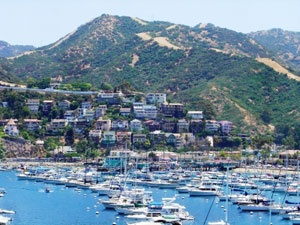 catalina island.  so beautiful.