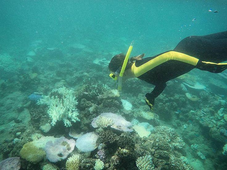 E assim vamos nos despedindo da Grande Barreira de Corais da Austrália.  Na foto o snorkel que fizemos com o barco da empresa @downundercruiseanddive .  Em resumo visitamos 2 áreas de corais uma no período da manhã e a outra a tarde. A empresa também oferece mergulhos com cilindro. Foi show!  Já estamos com saudades de Cairns uma cidade praiana super bonitinha que é ponto de partida para lugares fantásticos em Queensland!  Acompanhe esta viagem no nosso stories!  Agradecemos a…
