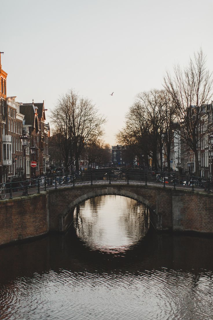 // Despite a completely irrational fear from watching Hostel movies way too young, I have always wanted to travel the streets of Amsterdam. This photo only invigorates that want. // background city bridge