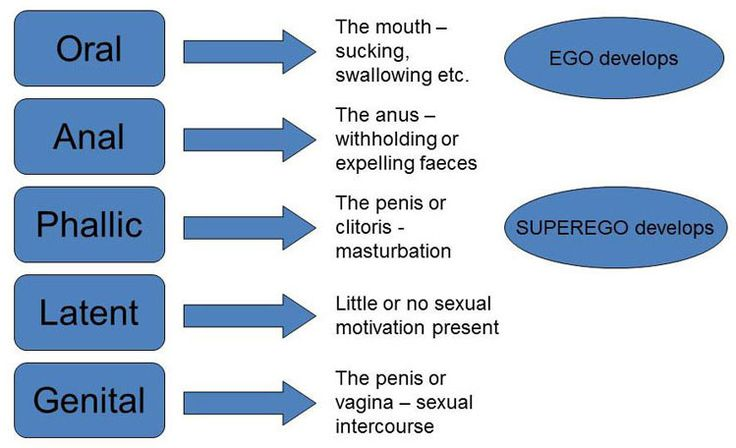Frueds Psychosexual Development  Freud Theory -2036