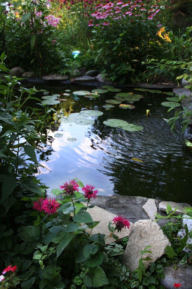 Best 25 koi ponds ideas on pinterest fish ponds koi for Koi pond color