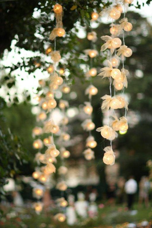Hanging String Lights Without Trees : 17 Best images about DIY Wedding Deco on Pinterest Orchid flowers, LED and String lights