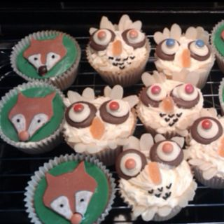 Gruffalo themed party cupcakes - the owl and fox