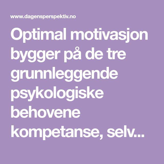 Optimal motivasjon bygger på de tre grunnleggende psykologiske behovene kompetanse, selvbestemmelse og relasjoner. Ukeavisen Ledelse har intervjuet Edward L. Deci, en av verden fremste motivasjonsforskere.