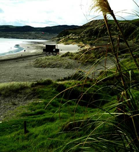 Raglan beaches. Surfing spots, swimming, beach walks.