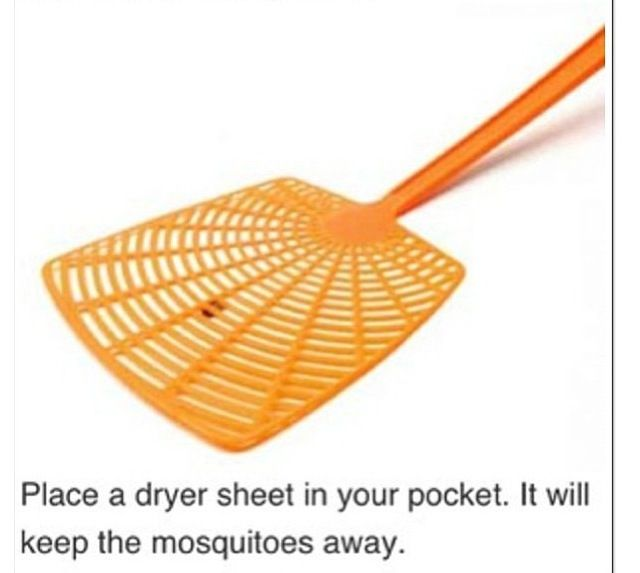 how to keep mosquitoes away tips pinterest