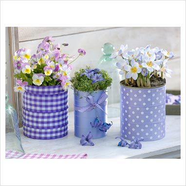 GAP Photos - Garden & Plant Picture Library - Tin cans decorated with purple ribbons. Step 3 of 3. Containers planted with Viola cornuta, Crocus chrysanthus 'Blue Pearl' and Lepidium with hyacinth flowers - GAP Photos - Specialising in horticultural photography