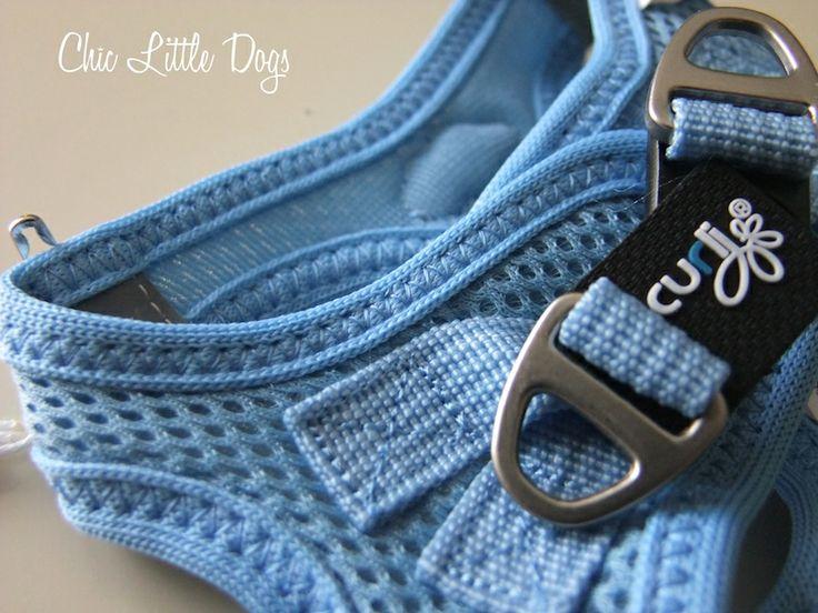 harnais chien Vest Curli Bleu, harnais pour chiot, harnais pour chihuahua, Chic Little Dogs, La Boutique Pour Petit Chien