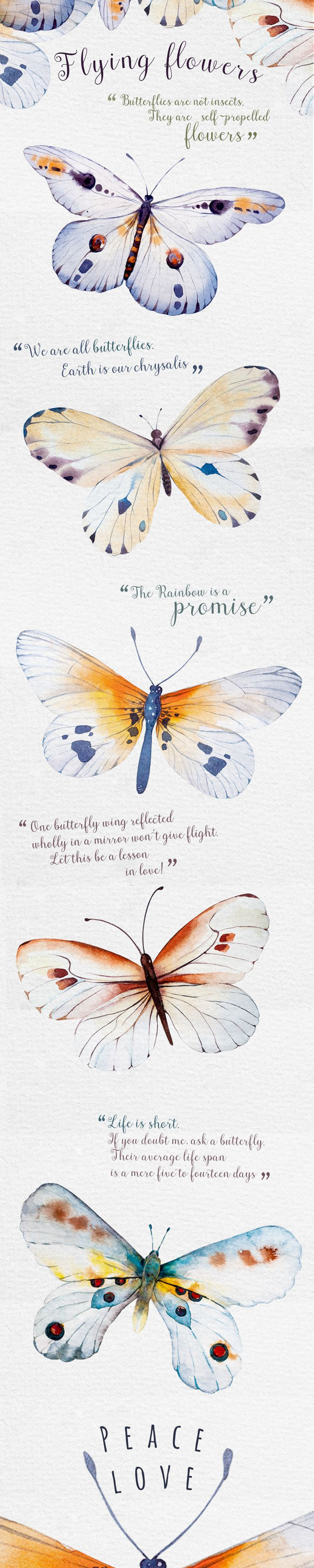 Available for sale here:https://creativemarket.com/Kris_peace/335161-Watercolor-butterfly-DIY?u=Kris_peace