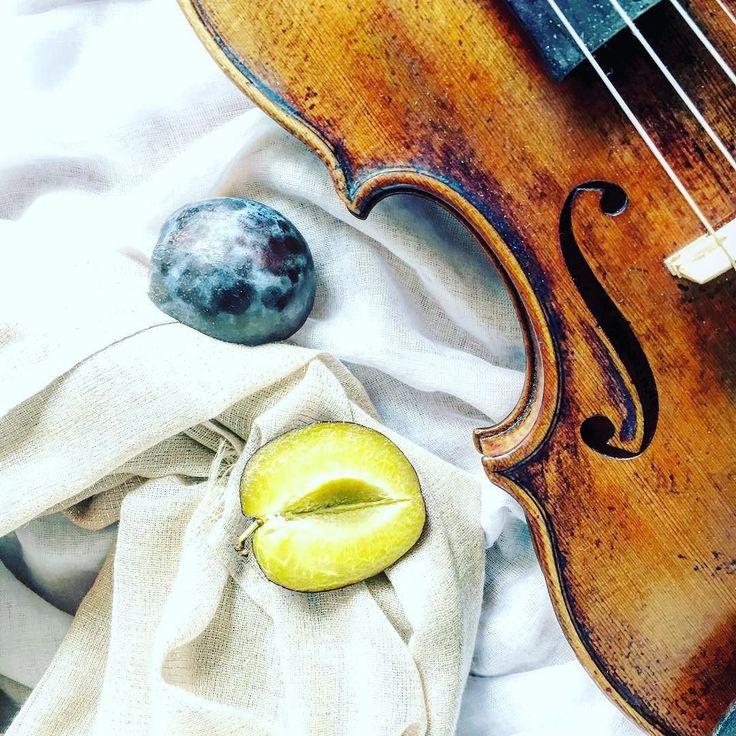Sezon na jesienny ból gardła uważam za otwarty   _________________________ #violin | #violino | #violinist | #violinlife | #violingirl | #skrzypaczka | #skrzypce | #muzyka | #geige | #fiddle | #musicaclassica | #instrument | #instaclassical | #bestmusicshots |  #soloist | #virtuoso | #stringmusician | #violinsolo | #jj_musicmember | #classicfm | #talentedmusicians | #instamusiciansdaily | #skrzypczyni | #shotwithlove | #prettycreativestyle | #pocket_creative | #momentsofmine…