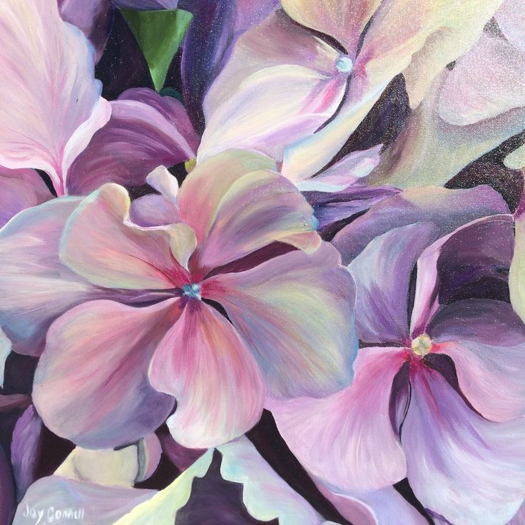 """Hydrangea Dreams"" by Joy Connell. Paintings for Sale. Bluethumb - Online Art Gallery"