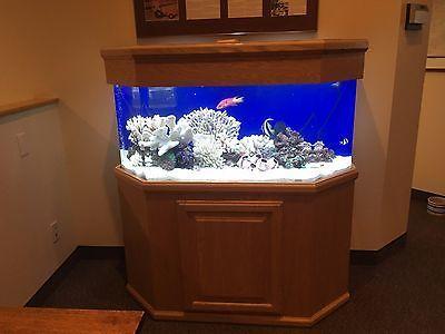 Buy 60-Gallon Acrylic Aquarium w/oak furniture at online store