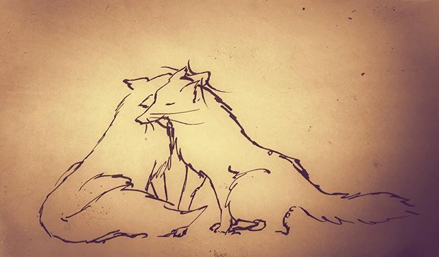 Ink - by Ashya Lane-Spollen. 'You smell like home...' #illustration #art #drawing #moleskine #ink #fox #wolf #love #life #home #foxes #wolves #story #valentine #valentines #ireallylikeyou #ilikelikeyou #nature #wild #animal #animals #romantic #friend #friends #friendship #dublin #ireland #baaxart #ashyalanespollen