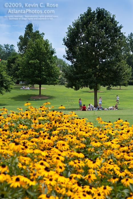 """Atlanta's Piedmont Park has been named one of """"America's Coolest City Parks"""" by Travel + Leisure!  My gr gr grandmother was OverSeer of this park"""