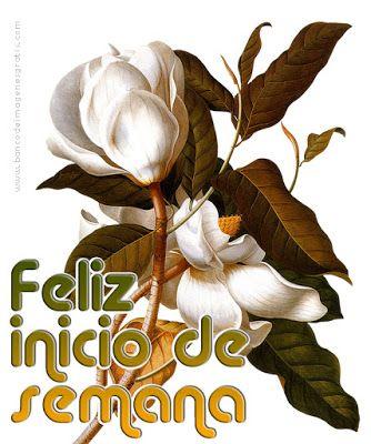 BANCO DE IMÁGENES: ¡Feliz Inicio de Semana! - Feliz Lunes - Postales con flores y mensajes para desear un feliz día a tus amigos del Face