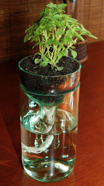 Glass Bottle Diy Planter For Creative Home Decor Http