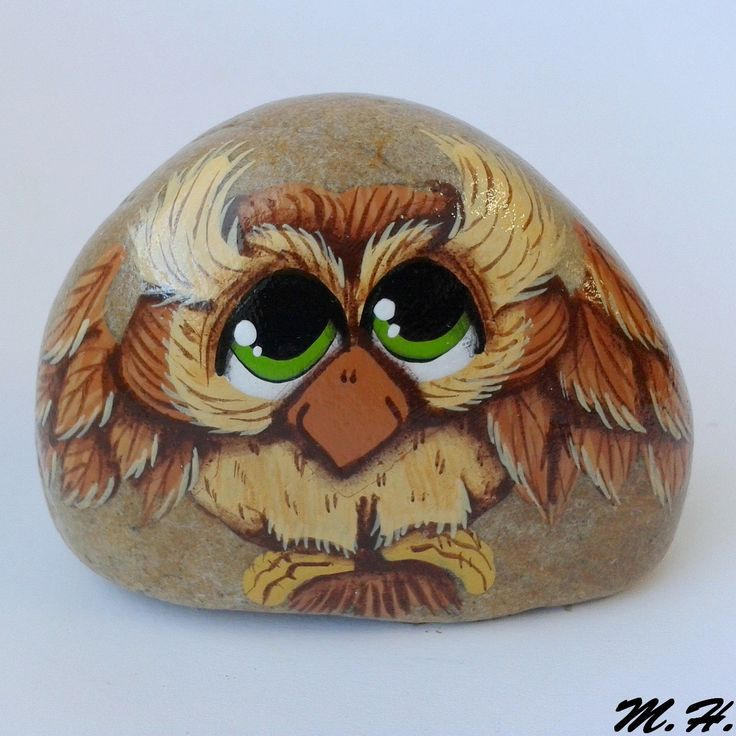.wise old owl painted rock