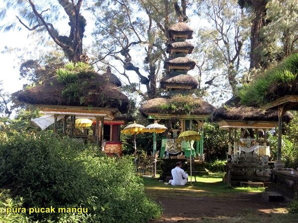 top of gunung pucak mangu
