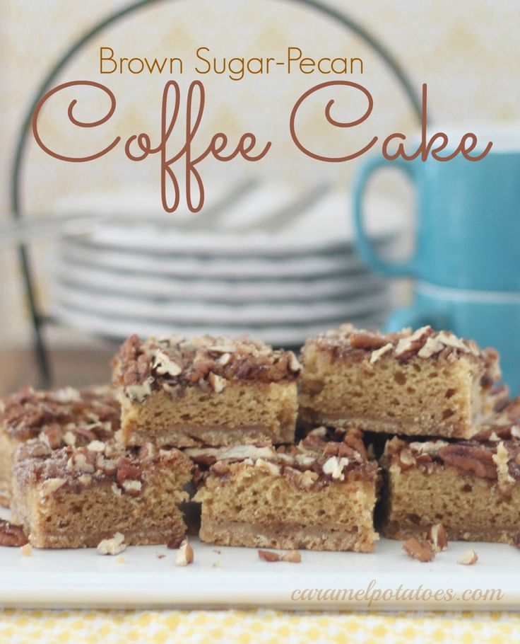 Brown Sugar-Pecan Coffee Cake- rich and moist for breakfast, brunch or dessert!