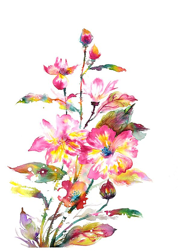 AZALEA Artist Haejin Yoo  Original - 29.7cm x 42.0cm on 300gsm water colour paper.  Mounted. Unframed.  Prints - using high quality light fast inks and media onto prepared art paper. Choice of sizes: A4, A3, A2 or A1