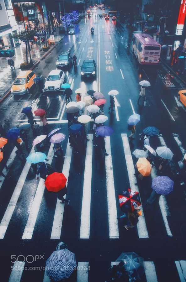 Popular on 500px : The rainy party by HansonMao