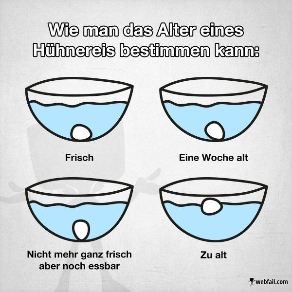 Der Eiertest - Fact Bild | Webfail - Fail Bilder und Fail Videos
