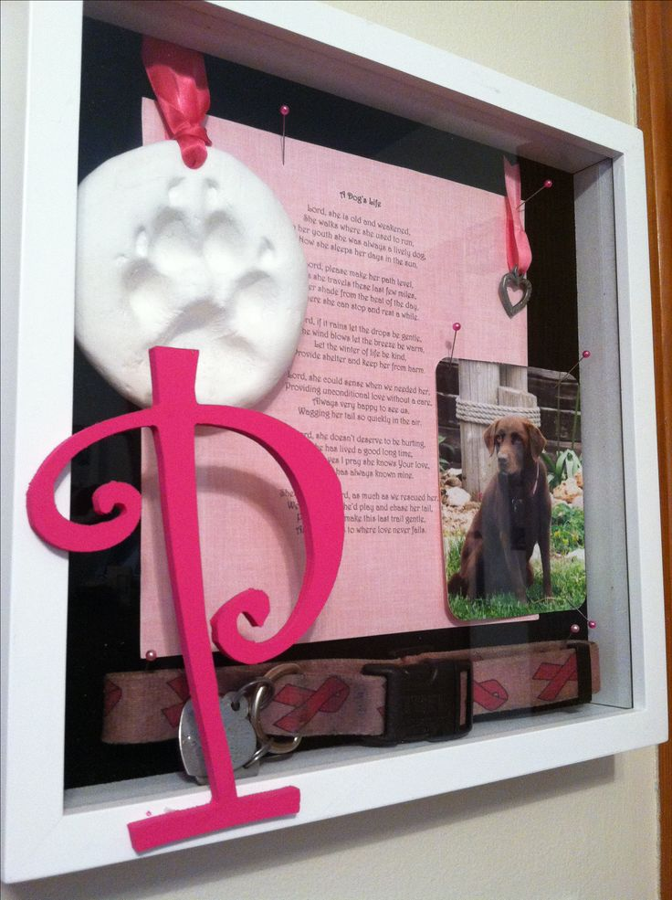 Tribute to our beloved dog, Pacey - square shadow box, painted wooden initial, photo, poem, charms, ribbons, collar, paw print ornament and pink tipped straight pins.