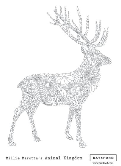 Millie Marotta stag --> If you're in the market for the best adult coloring books and supplies including colored pencils, watercolors, gel pens and drawing markers, logon to http://ColoringToolkit.com. Color... Relax... Chill.