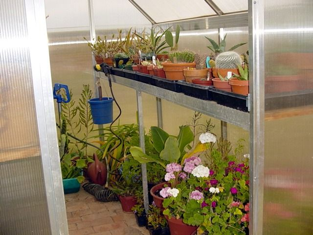 17 best ideas about serre pour jardin on pinterest mini - Prix d une serre de jardin ...