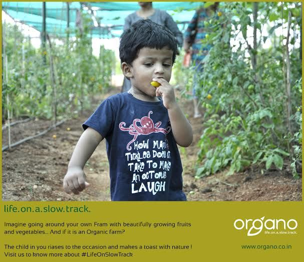 #LifeOnSlowTrck Experience the best part of your life in #OrganicFarm by #CollectiveFarming at #NaandiCommunity.