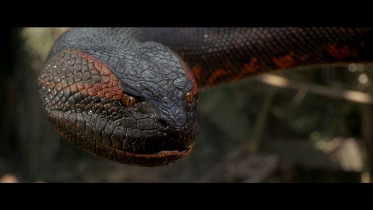 4 Anaconda Papéis de Parede HD | Planos de Fundo - Wallpaper Abyss