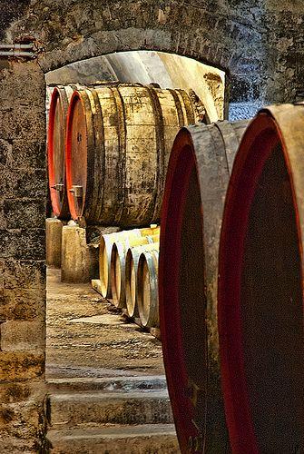 Les caves en Toscane  #Vinvinvin #uvas #vino #cosecha