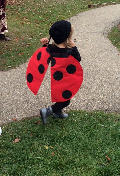 DIY Seven-Spotted Ladybug Costume - Part 2                                                                                                                                                                                 More