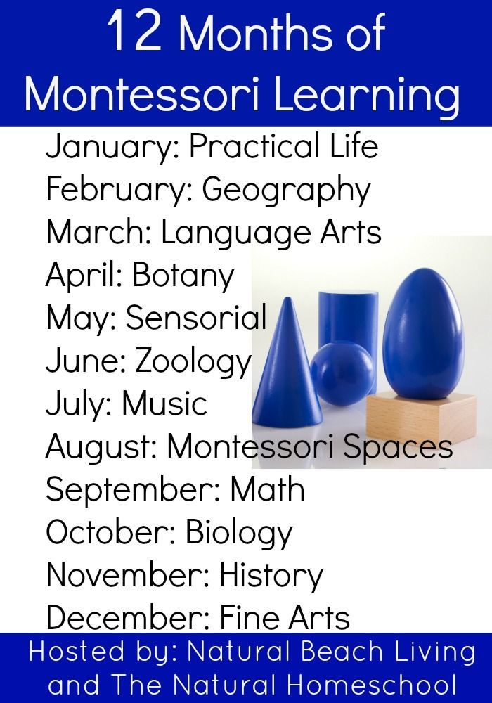 12 months of Montessori Learning, practical life, geography, Language Arts, Botany, Sensorial, Zoology, Music, Montessori Spaces, Math, Biology, History, Fine Arts, Maria Montessori activities http://www.naturalbeachliving.com