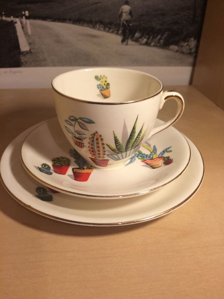 Alfred Meakin Cactus cup saucer and teaplate trio 1950 s Retro Vintage ceramic