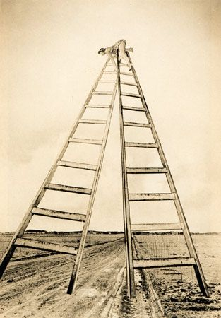 Grete Stern, Perspective, 1949