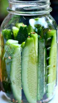 Copycat Claussen Kosher Dill Pickles ~ Make your own super-crunchy pickles with this recipe… so simple to make in your own kitchen.