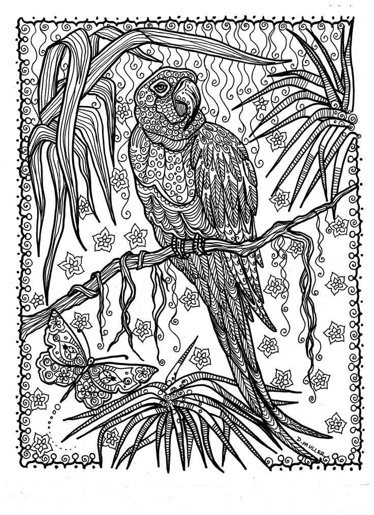 593 best Coloring pages to print