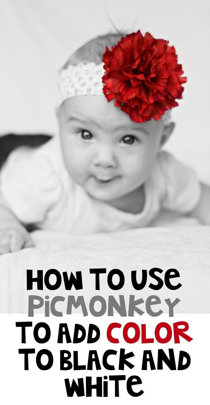 How to add a splash of color to black and white photos using PicMonkey