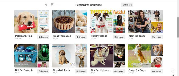 Wie op de pagina van PetPlan Insurance komt, heeft niet meteen door dat het om een ziekteverzekering voor honden gaat.  De pagina trekt de hondenliefhebber aan omwille van de vele boards met uitgebreide info over honden.  Er is ook een board waar ze het personeel voorstellen, waardoor het bedrijf 'persoonlijker' wordt en je sneller geneigd bent om bij hen een verzekering af te sluiten.  PetPlan slaagt er zo in om de hondeneigenaars ervan te overtuigen dat ze het beste willen voor hun…