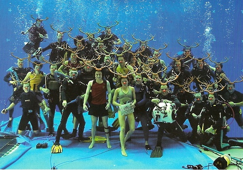 During the last filming of the underwater scenes of the Goblet of Fire, Daniel Radcliffe together with some of the crew gamely posed for the camera.  The pic was sent as a Christmas card to the fans