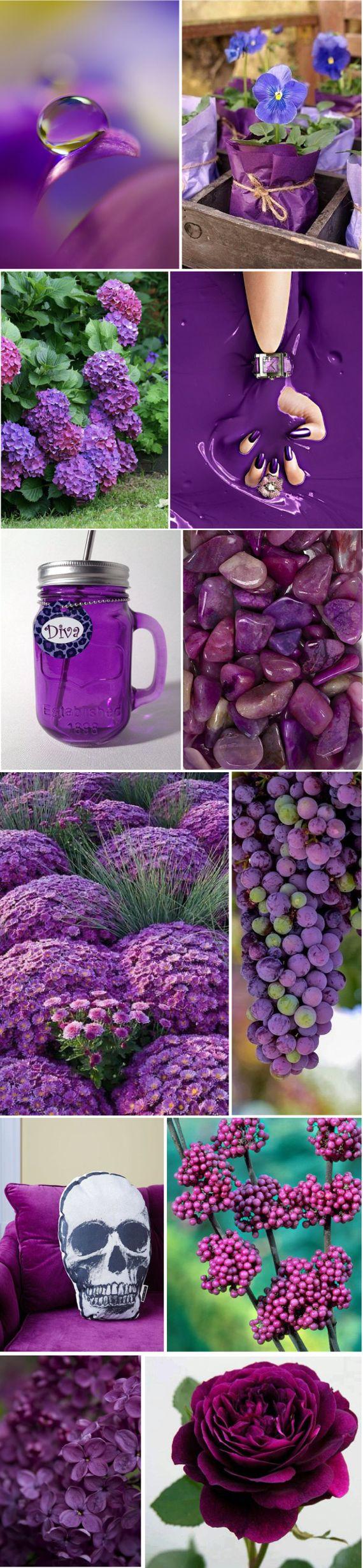 Пурпурные цвета